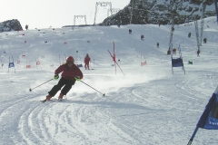 Skirennsport alpin 2007-2008