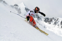 Skirennsport alpin 2011
