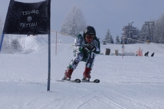 Skirennsport alpin 2012