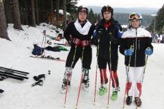 Skirennsport alpin Saison 2014/2015