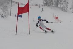 Skirennsport alpin Saison 2015/2016